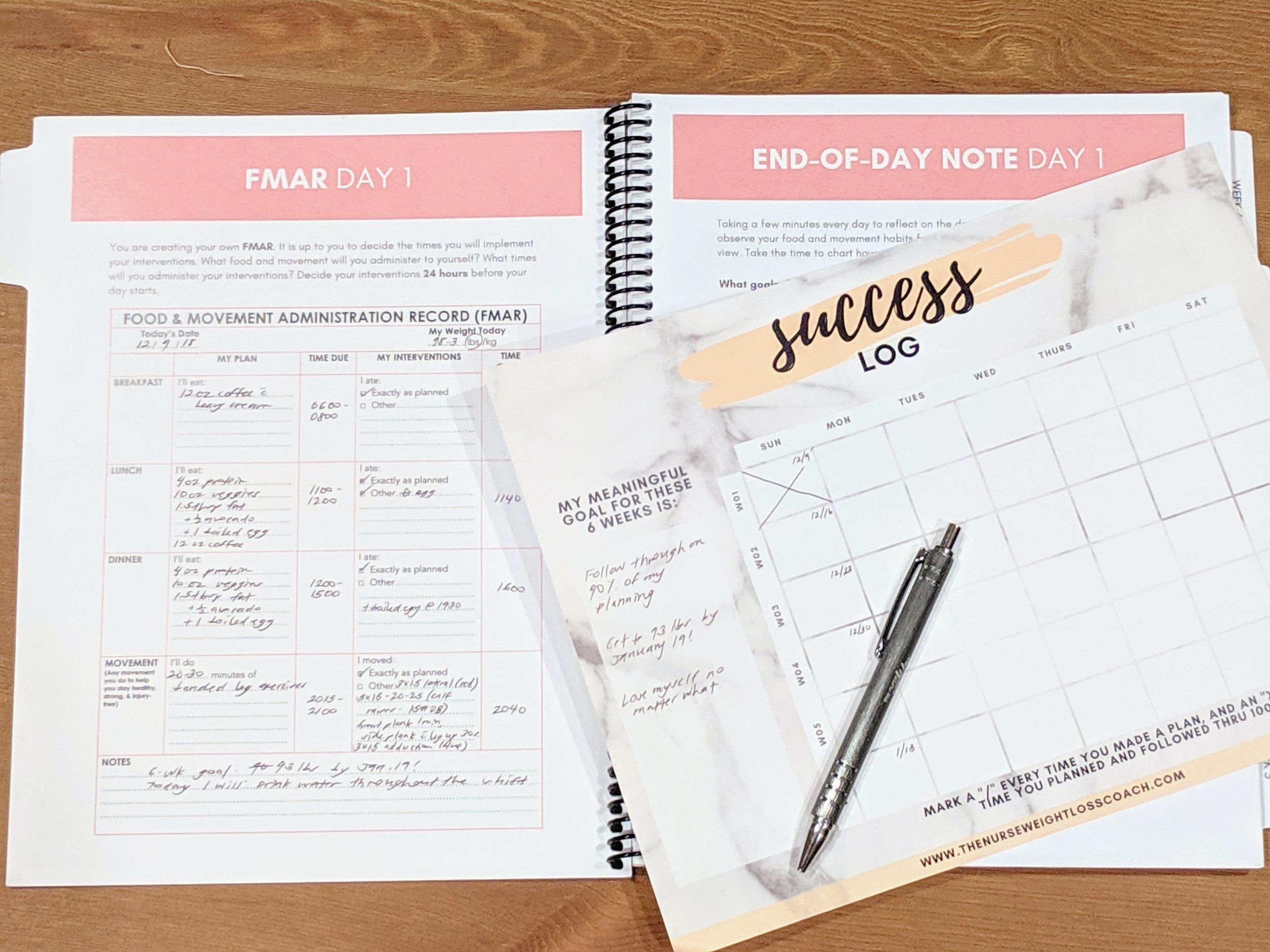 A snapshot of the Weight Loss Care Plan & Success Log that all my clients get!