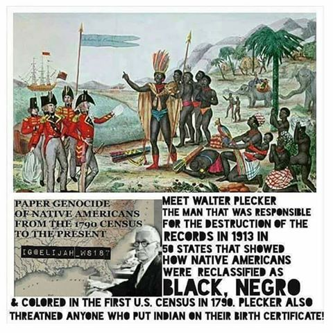 De-nationalizing of Indigenous Africans in America was started when European immigrants realized we were already here from Africa