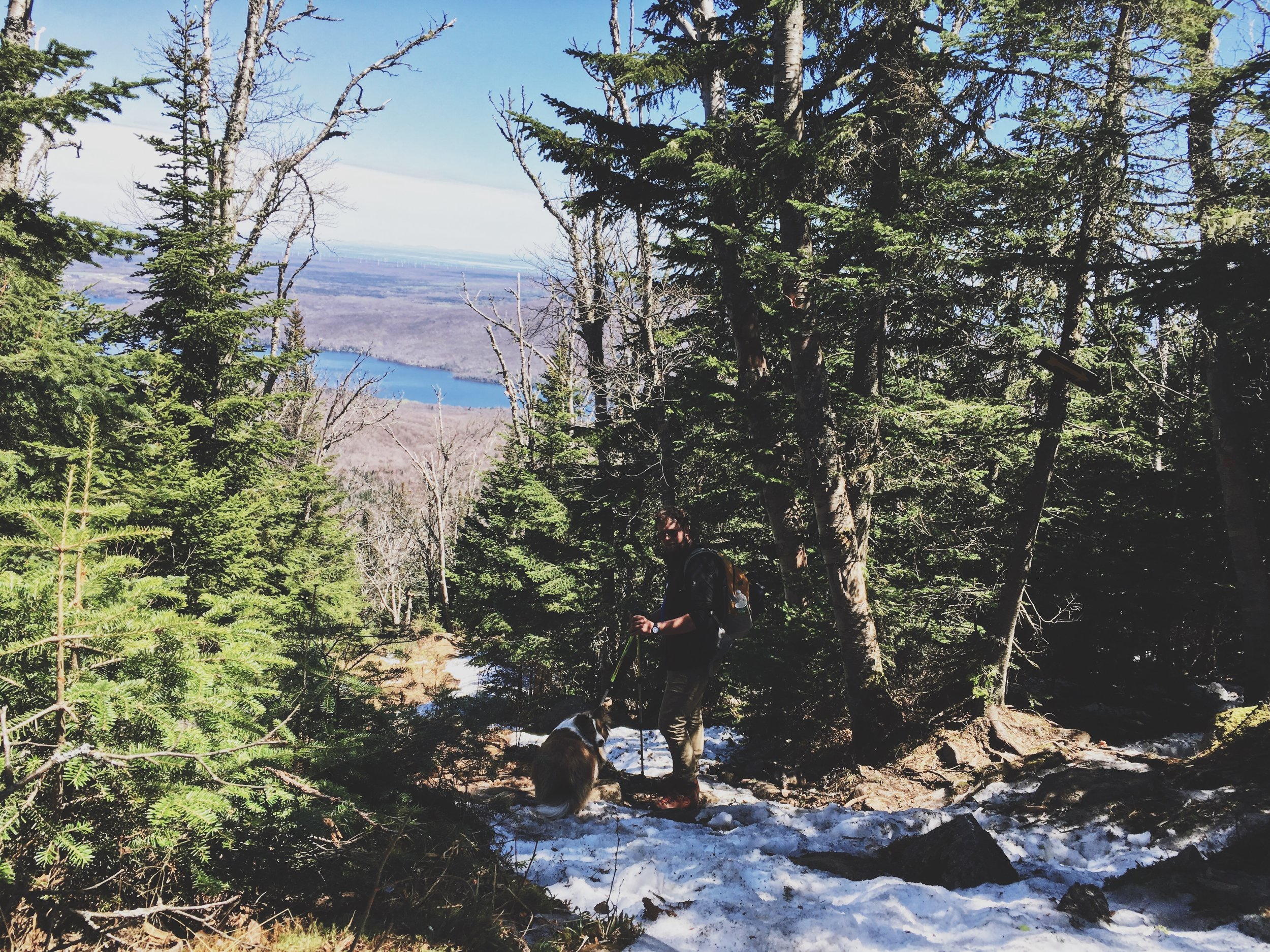 lyon-mountain-expedition-canine-randonnee