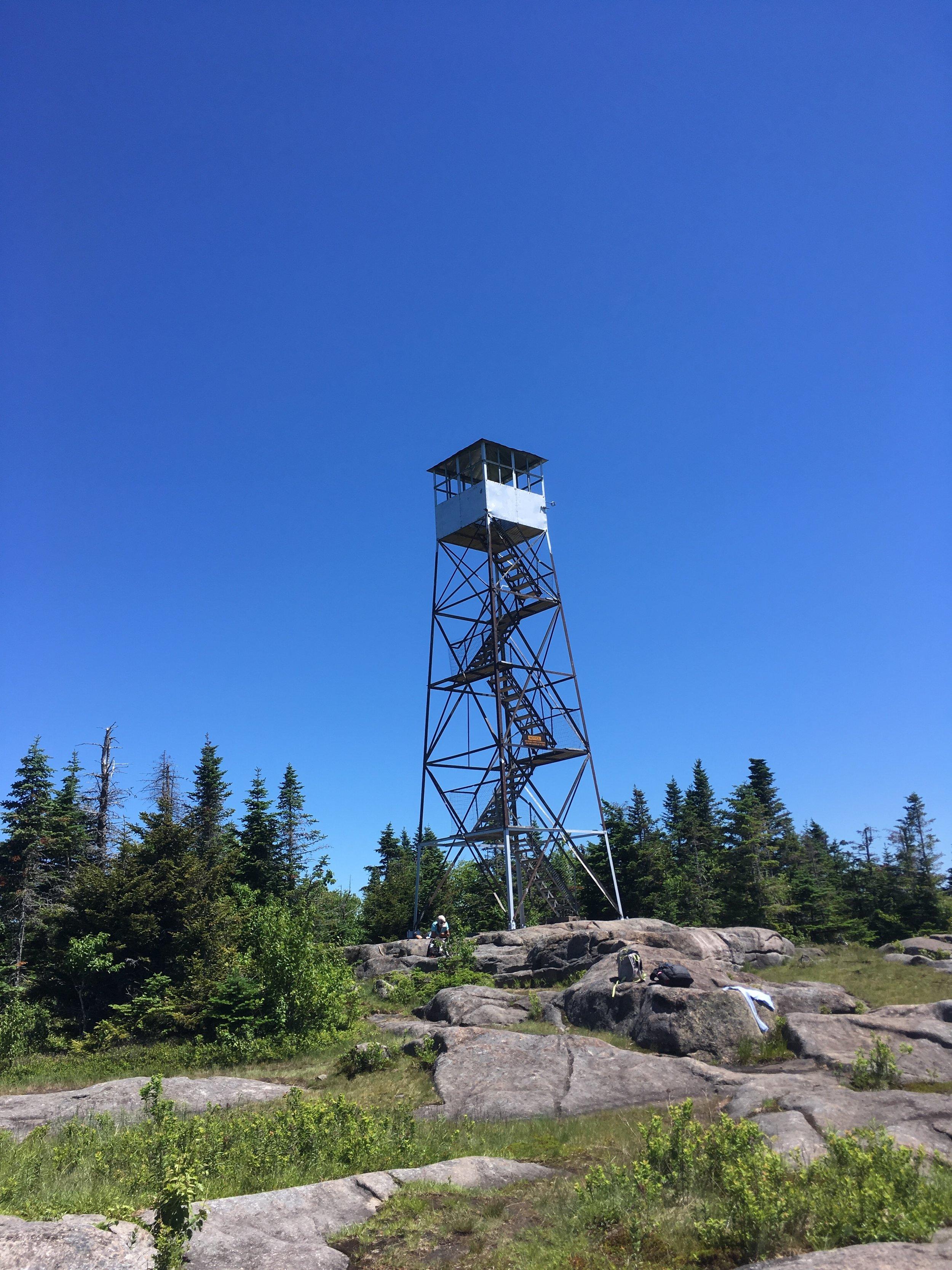 st-regis-new-york-expedition-canine-sommet-firetower.JPG