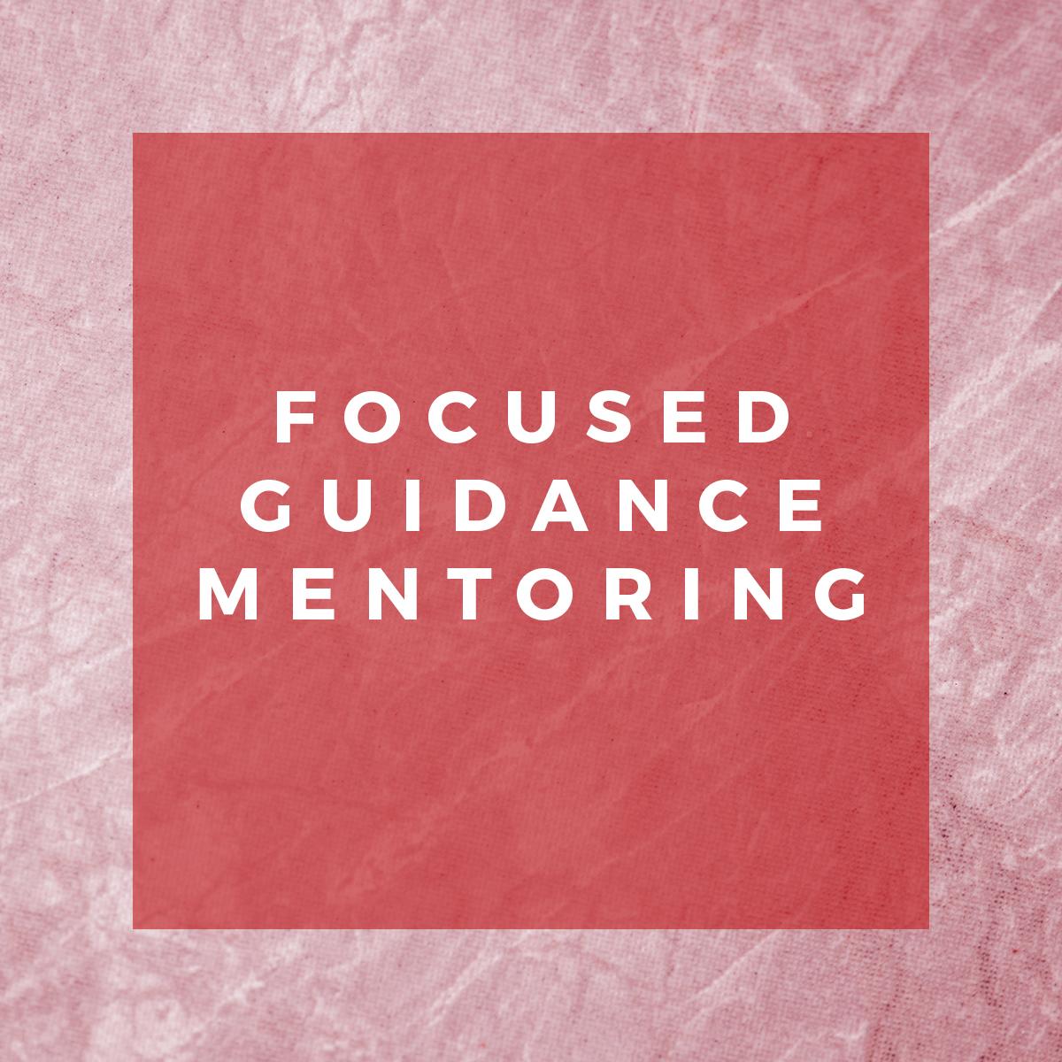 Focused-Guidance-Mentoring.jpg