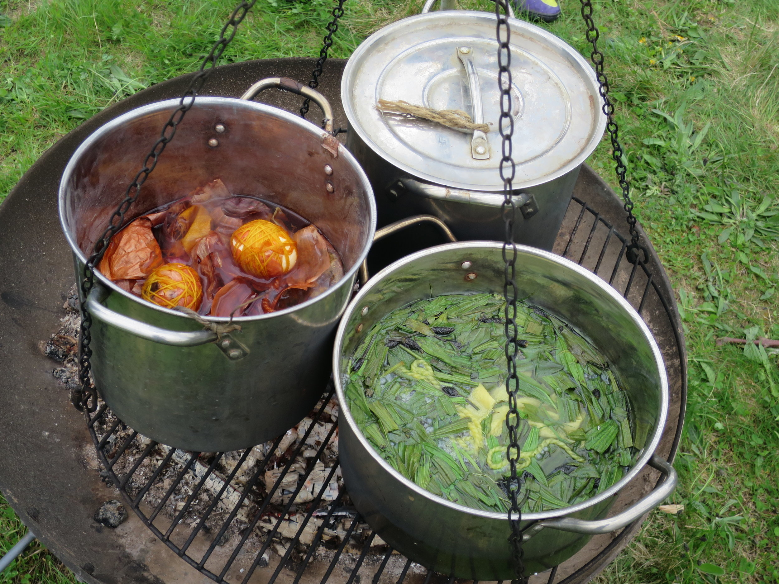 Dyeing 28 Onion skins Plantain and....JPG