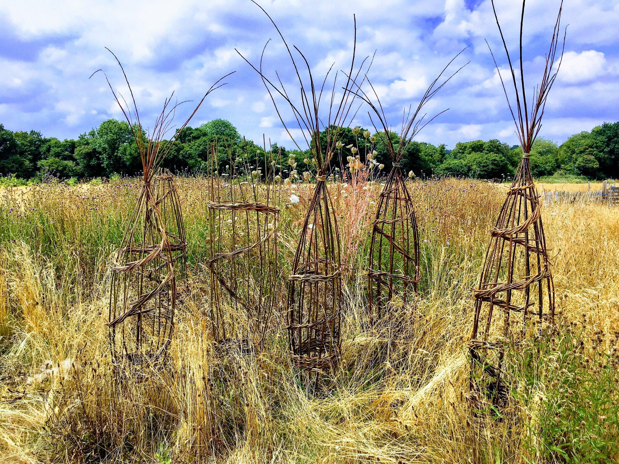 Willow obelisks3.jpg