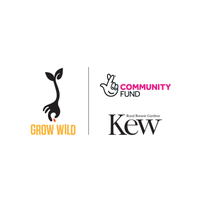 GrowWild_Kew_NLCF_Logos_LockUp_Vertical_LightBG.png