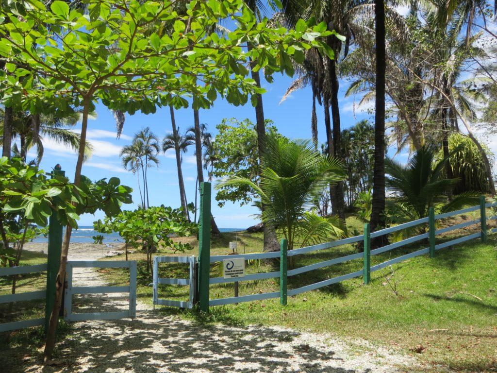 Saskia_Schreiber_Retreat_Costa_Rica_IMG_1437.jpg