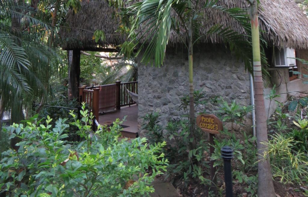 Saskia_Schreiber_Costa_Rica_Retreat_IMG_1344-1024x657.jpg