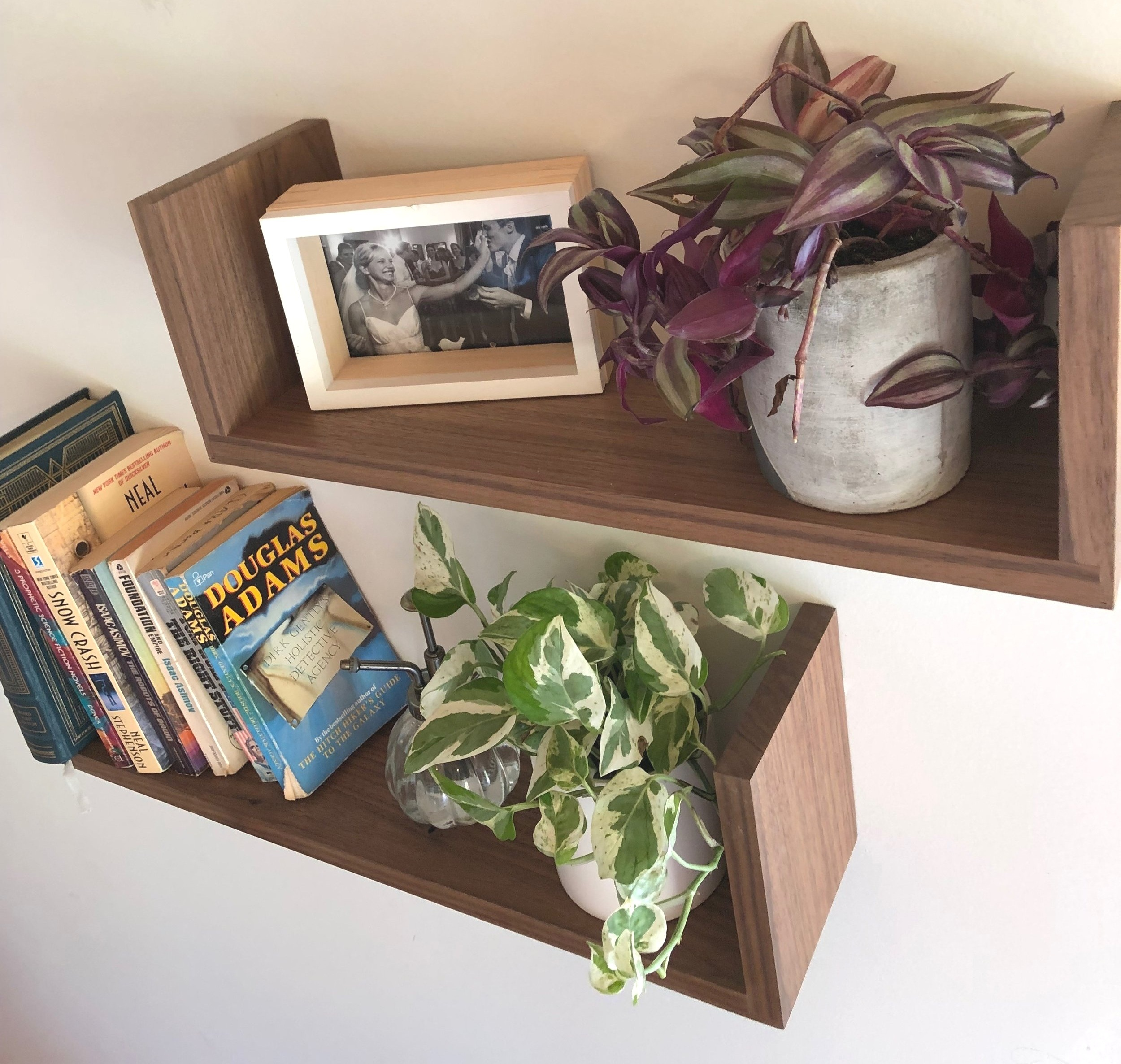 Indoor plants that came pre-potted from one of our (favorite) retailers,  Carousel + Folk  sitting on some Walnut  Floating U Shelves