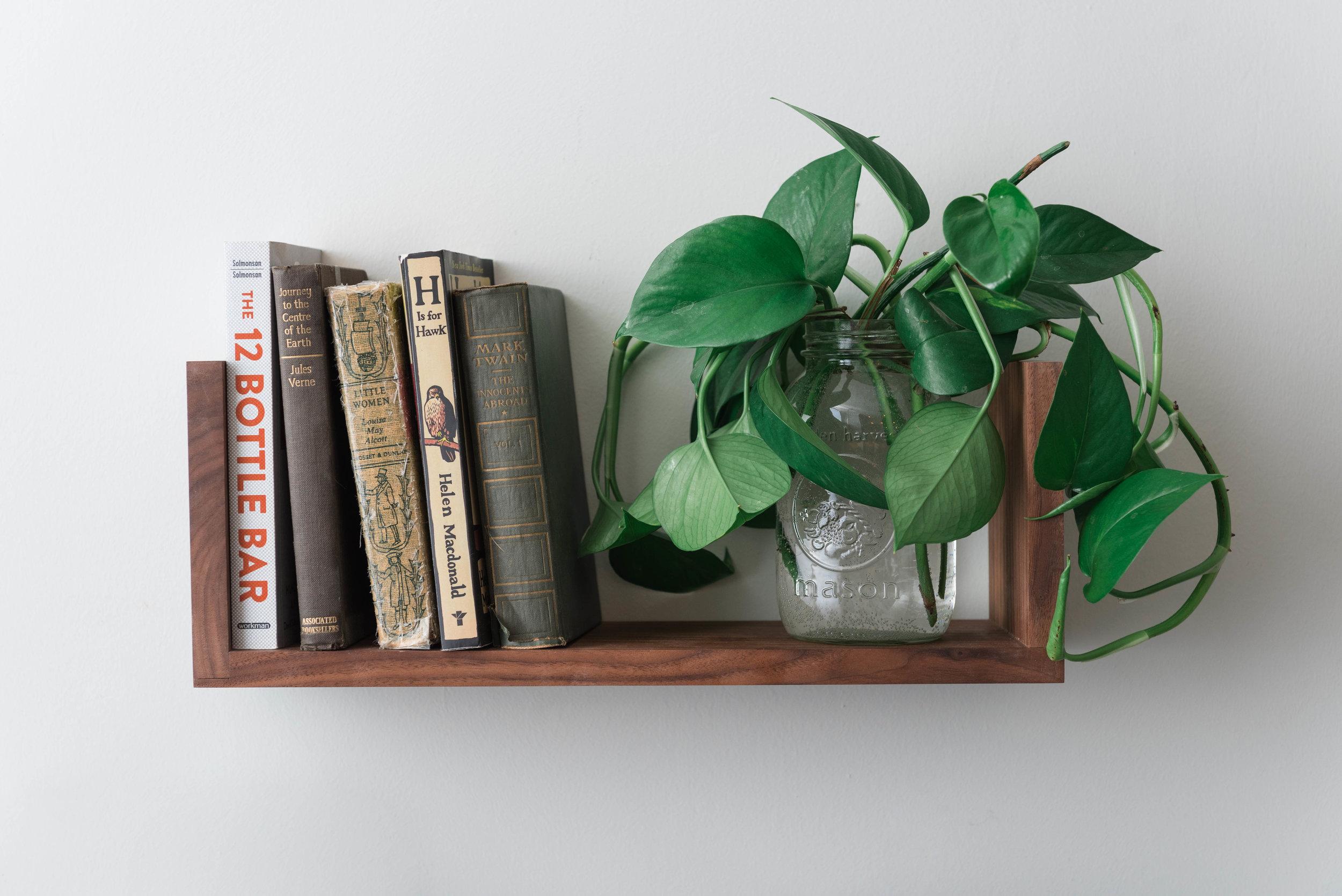 Walnut  Floating U Shelf  featuring a Pothos plant