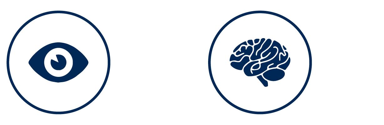 hunterian_technology_eye_&_brain.png