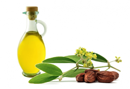 Jojoba Oil | Mindfully Made For You