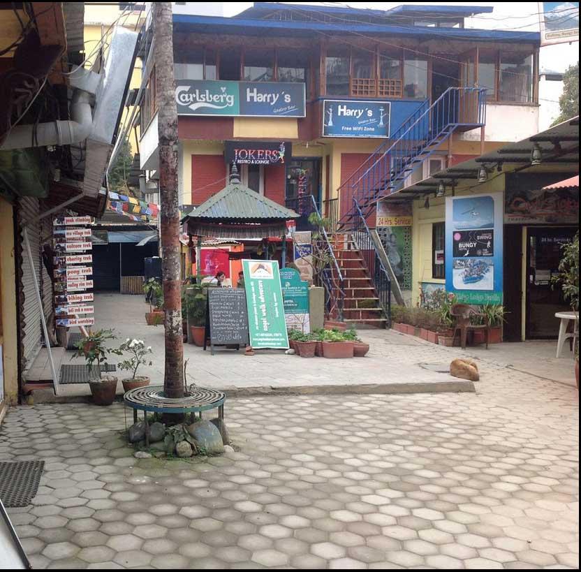 Courtyard space.jpg
