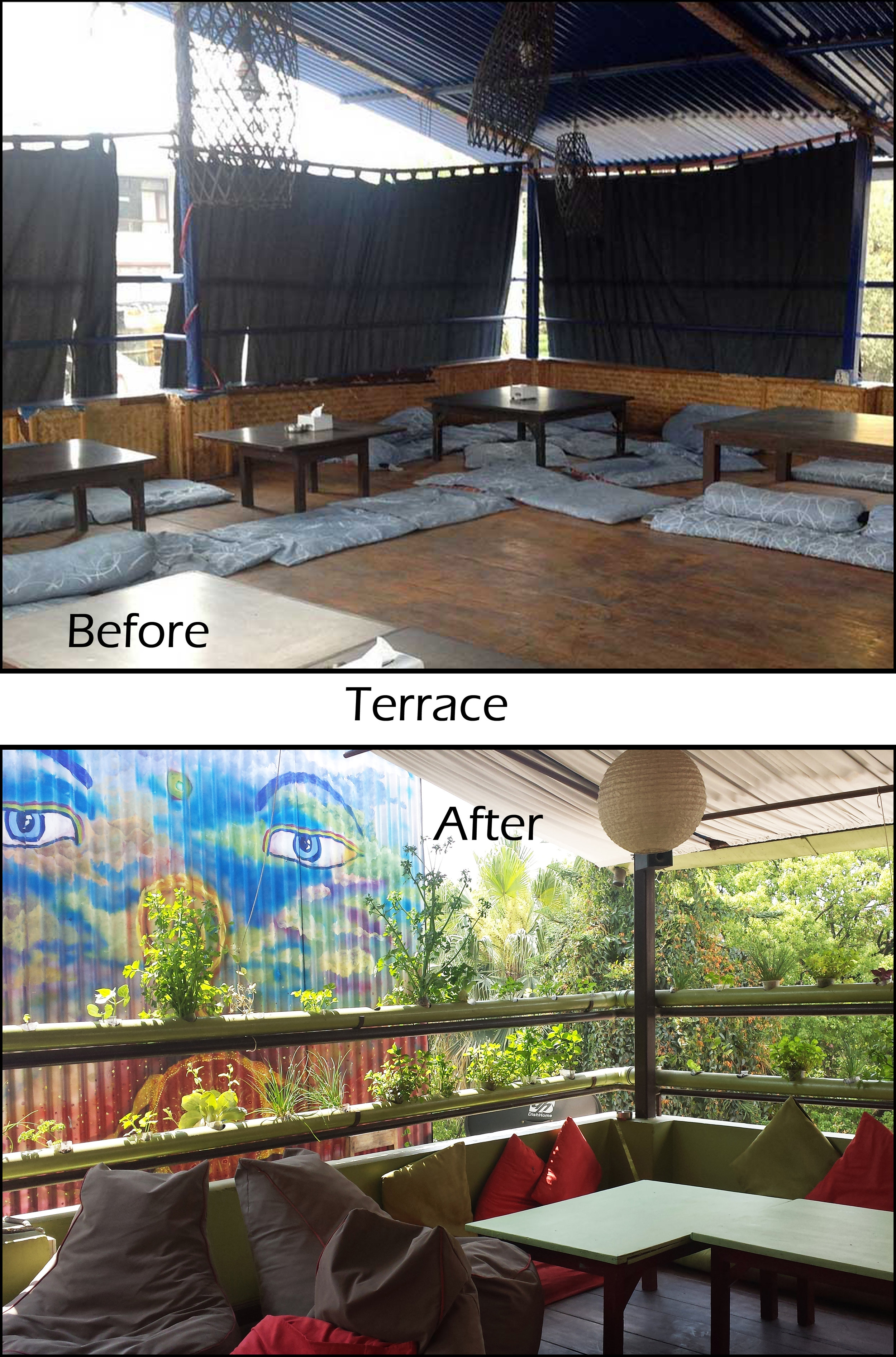 Terrace before and after.jpg