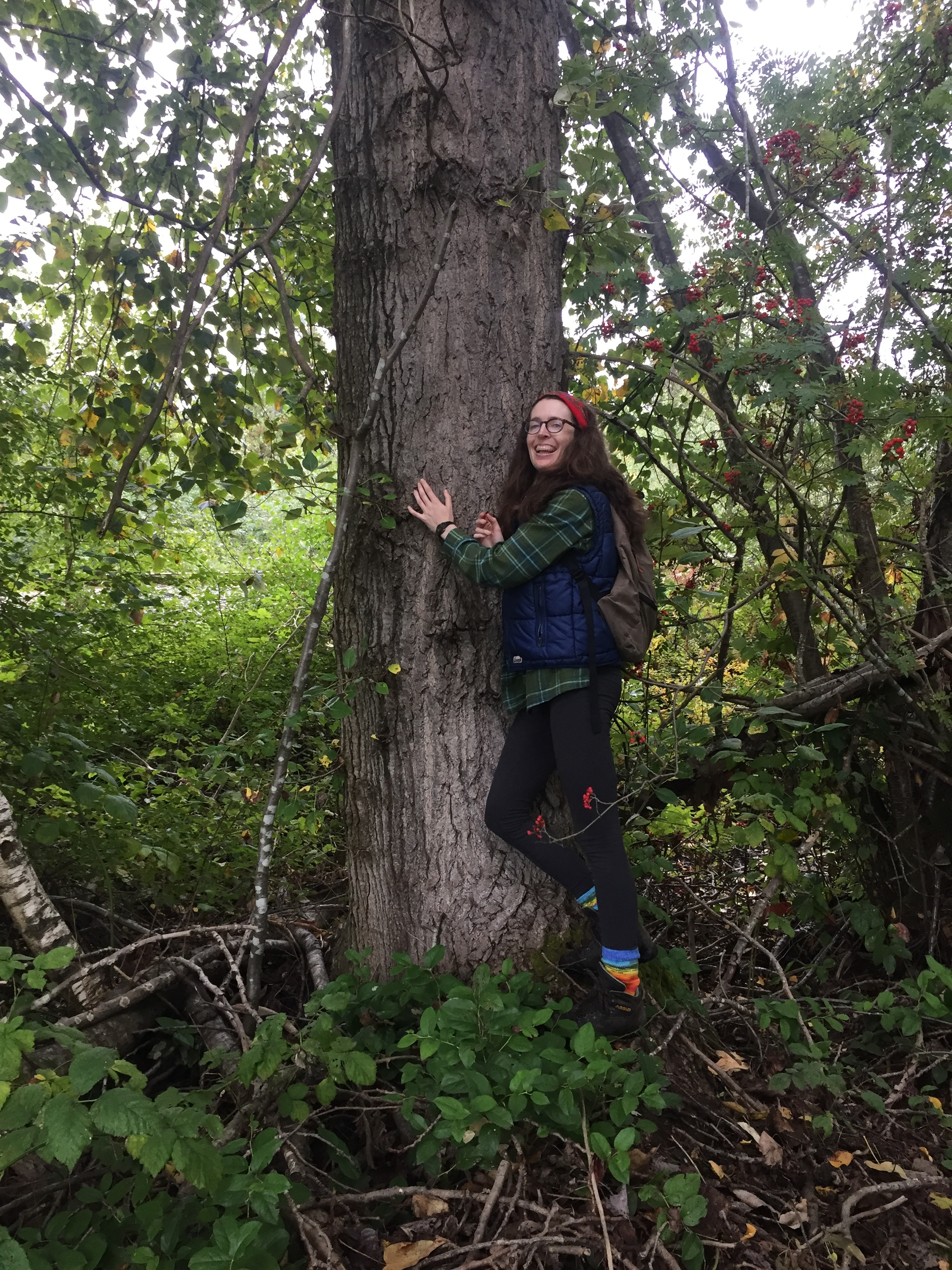 A tree hunter and her quarry.