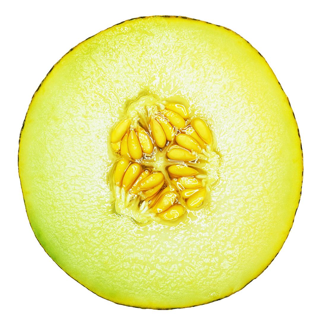 Galla Melon