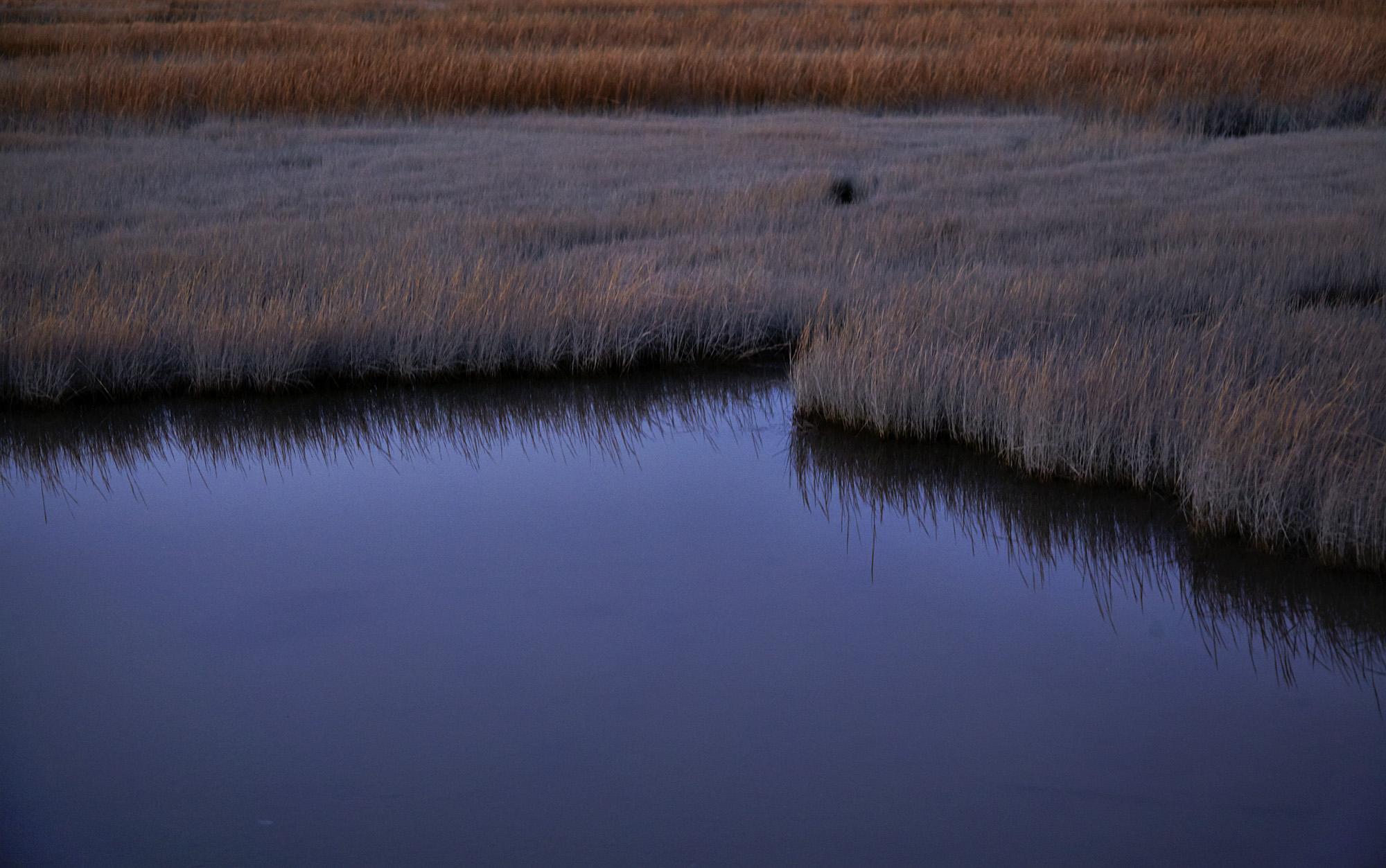 Marsh, Stony Creek