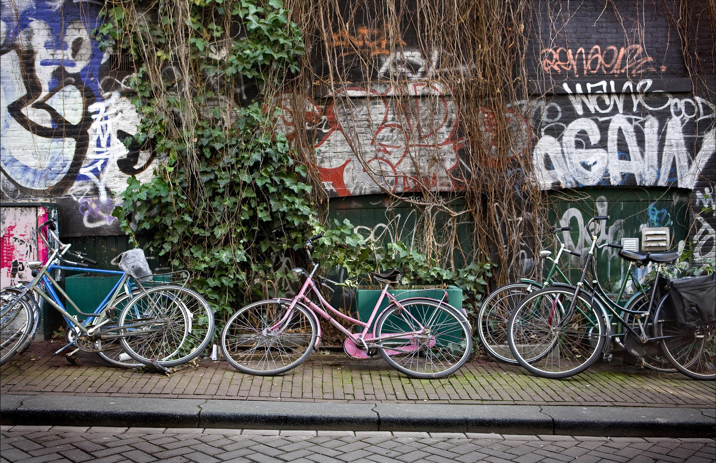 Fred Collins -  Amsterdam Bikes