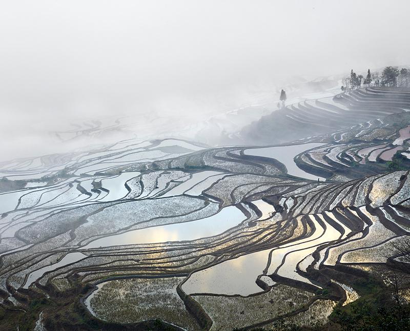 Rice Terraces, (Duoyishu), Yunnan, China, 2013