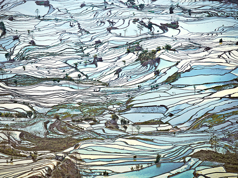 Rice Terraces, (Laohuzui II), Yunnan, China, 2013