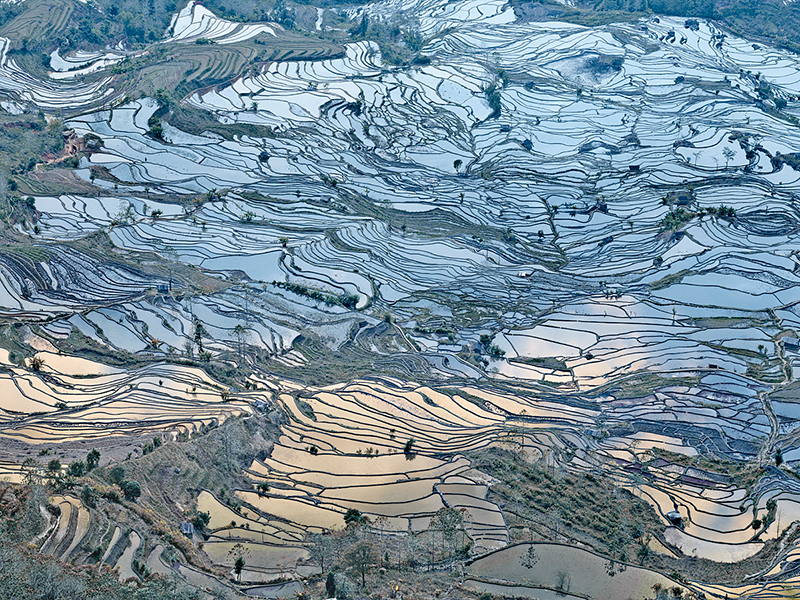 Rice Terraces, (Laohuzui I), Yunnan, China, 2013