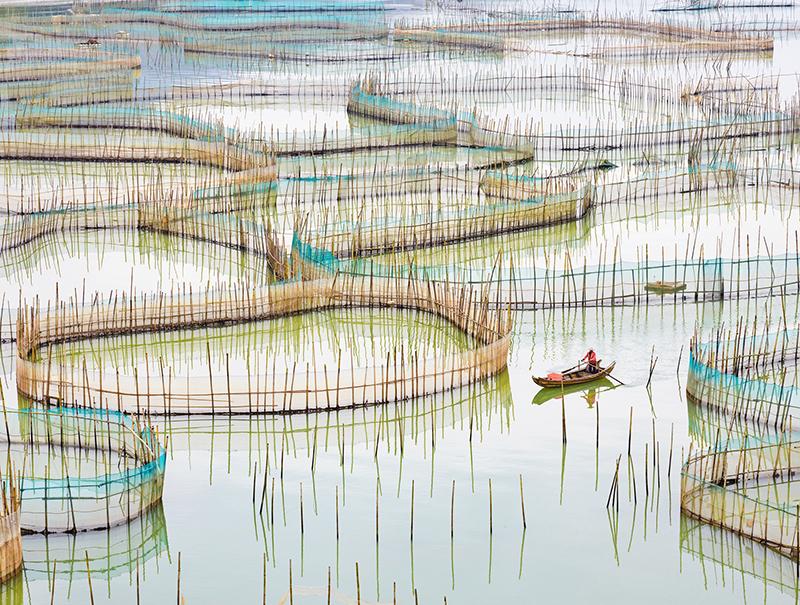 Nets 1, China, 2017