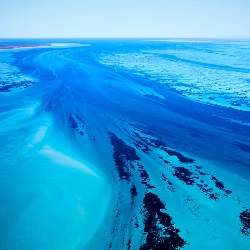 Shark Bay I, Australia, 2016