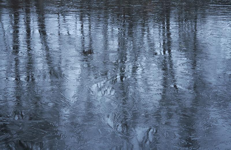 Sean Kernan -  Fresh Pond Ice
