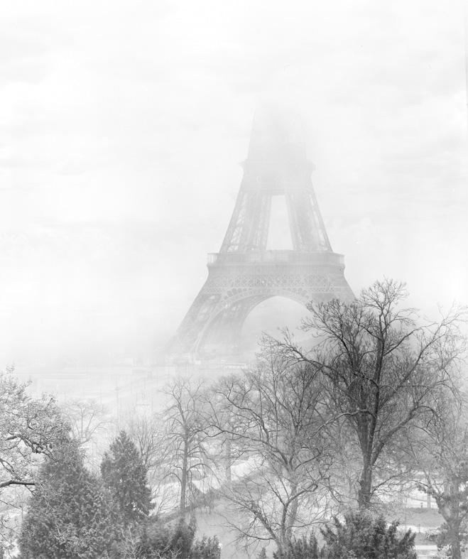 Jean Michel Berts -  Eiffel Tower