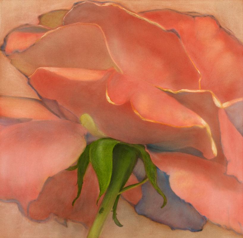 Tea Rose I