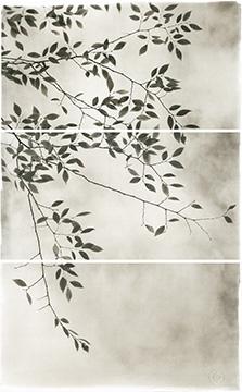Late Leaves III
