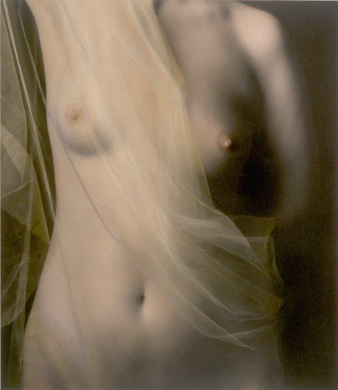 Nude with Netting