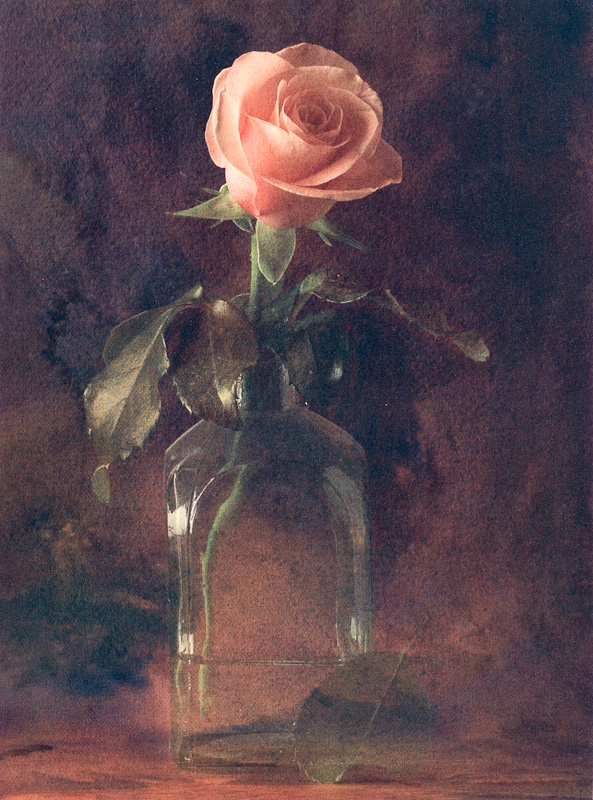 Rose in a Jar