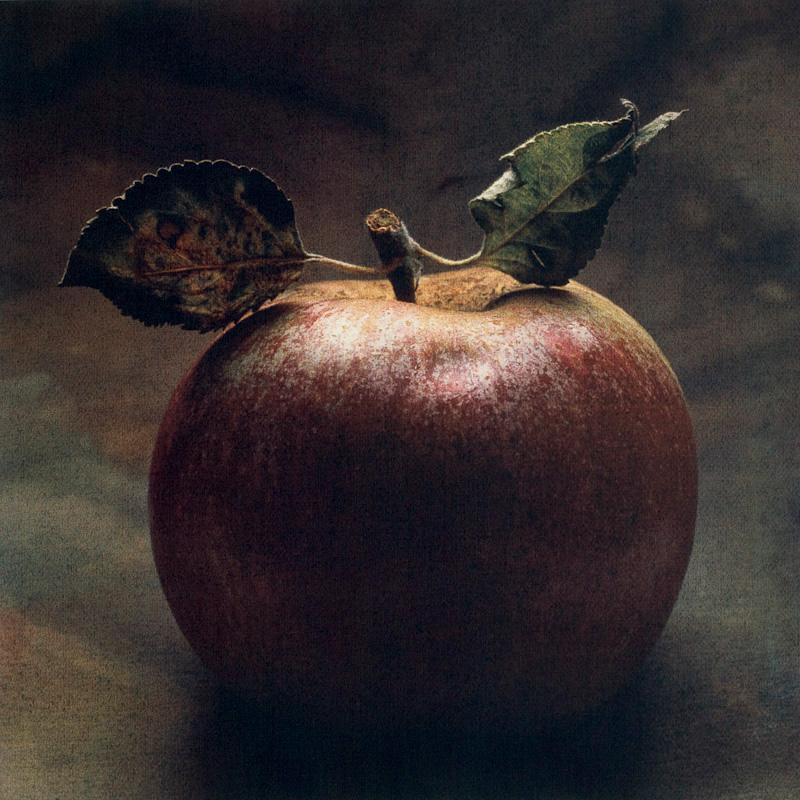 Adam and Eve Apple II