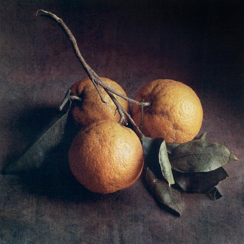 Autumn Oranges II