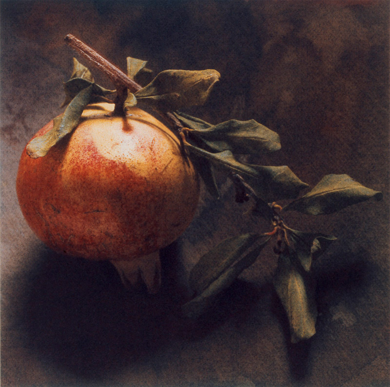 Autumn Pomegranate and Leaves II