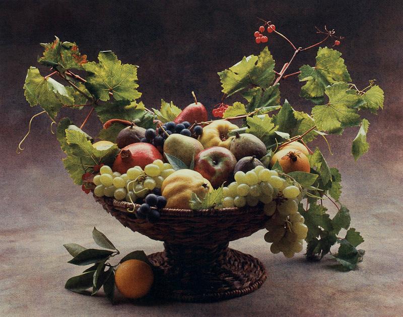 Caravaggio Harvest II