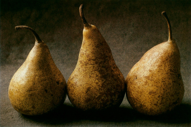 Pear Triptych III