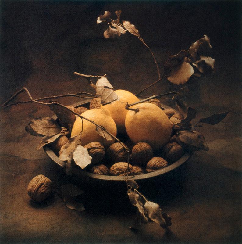 Winter Lemons, Nuts and Leaves II