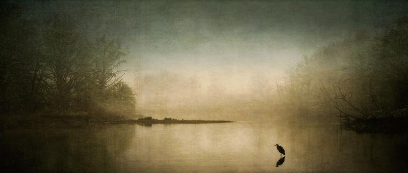 Dawn's Silent Approach