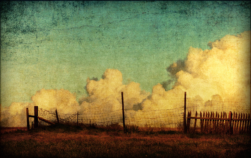 Beyond the Fenceline