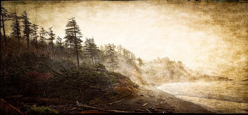 Fogbound Beach