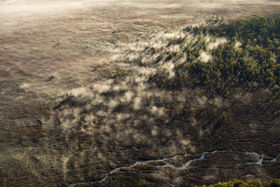 Rising Sun Chasing Fog from Woods near Nanticoke, NY