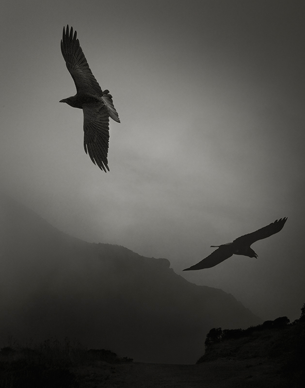 Odin's Cove #3.jpg