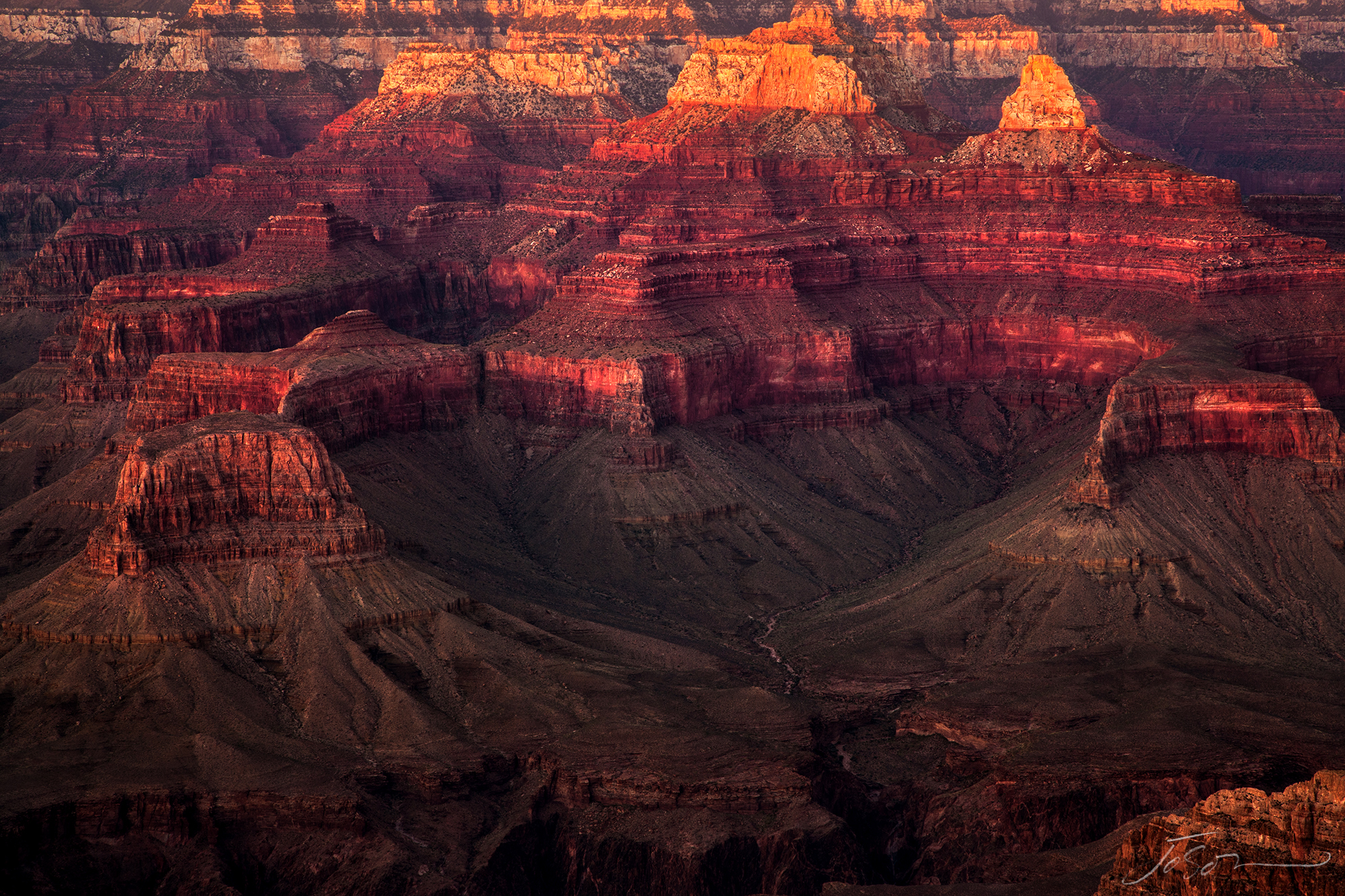 Grand Canyon National Park 7.jpg