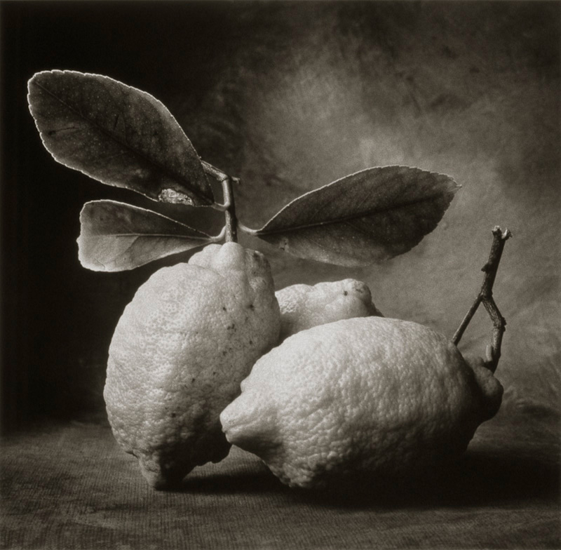 Tuscan Lemons.jpg