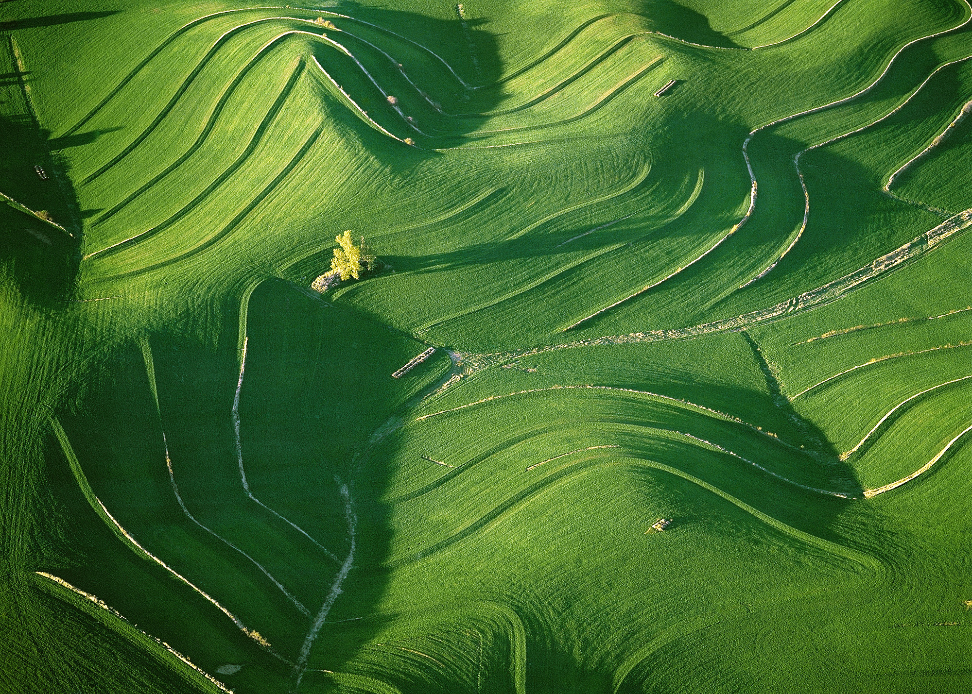 Undulating Hills - near Wahoo, Nebraska, USA 2006    [004-0012].jpg