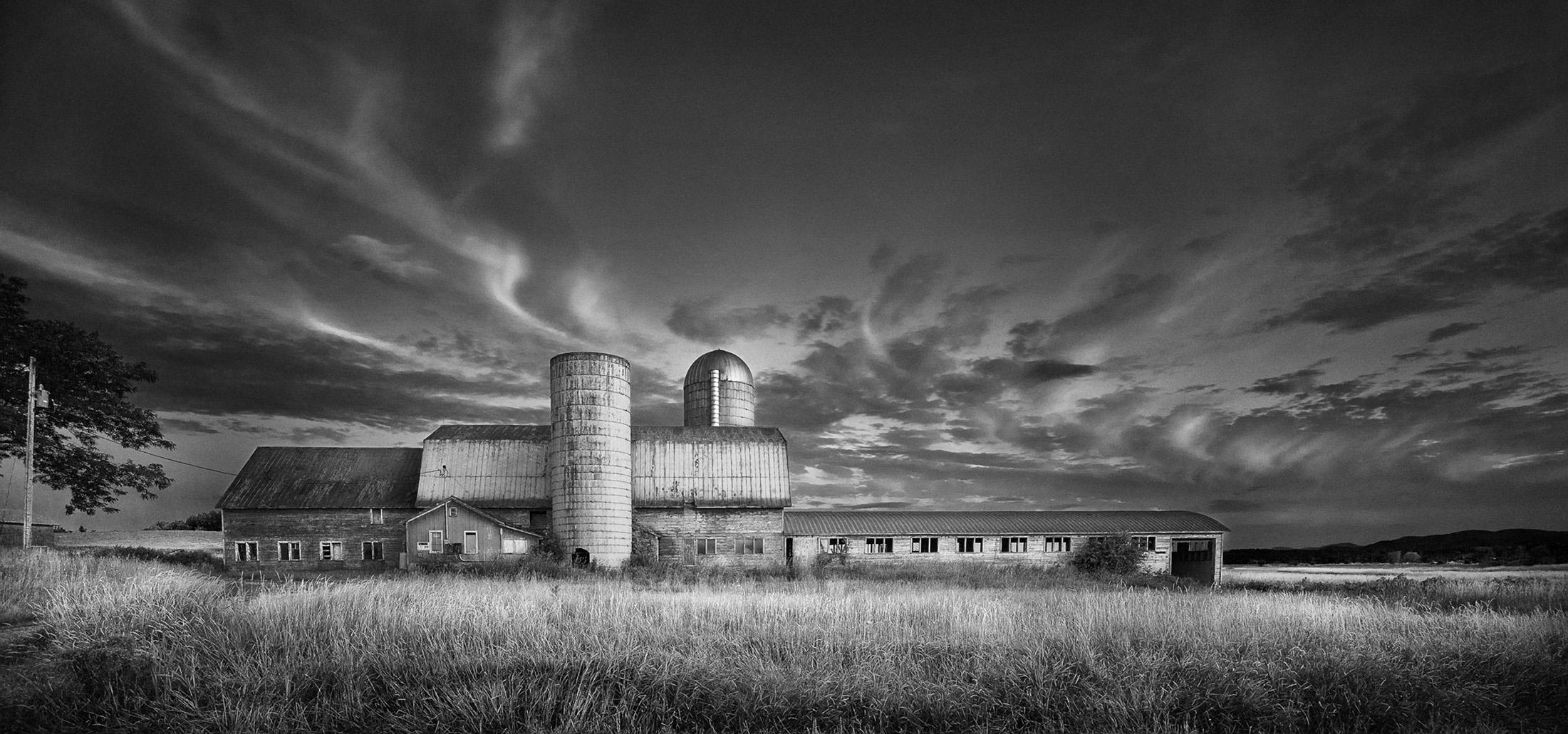 Bridport Farm 1