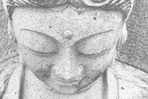 NEW YORK:New York Center for Contemplative Care - The New York Zen Center for Contemplative Care delivers contemplative approaches to care through education, direct service, and meditation practice.New York Zen Center website