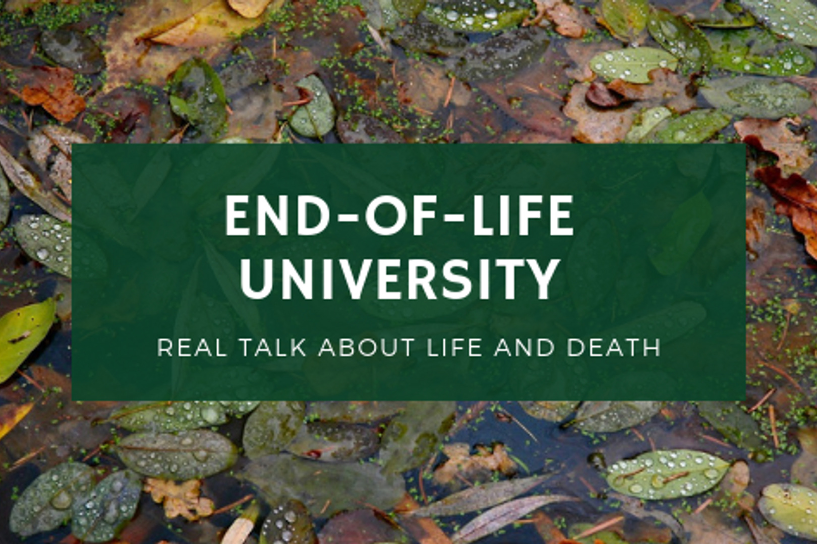 US:End-of-Life University - Real talk about life and deathLaunched by Karen Wyatt, MD, it offers free podcasts and more.EOL University website