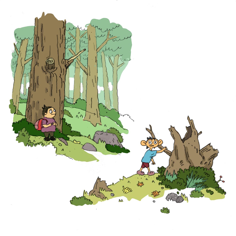 forestsketchs.png