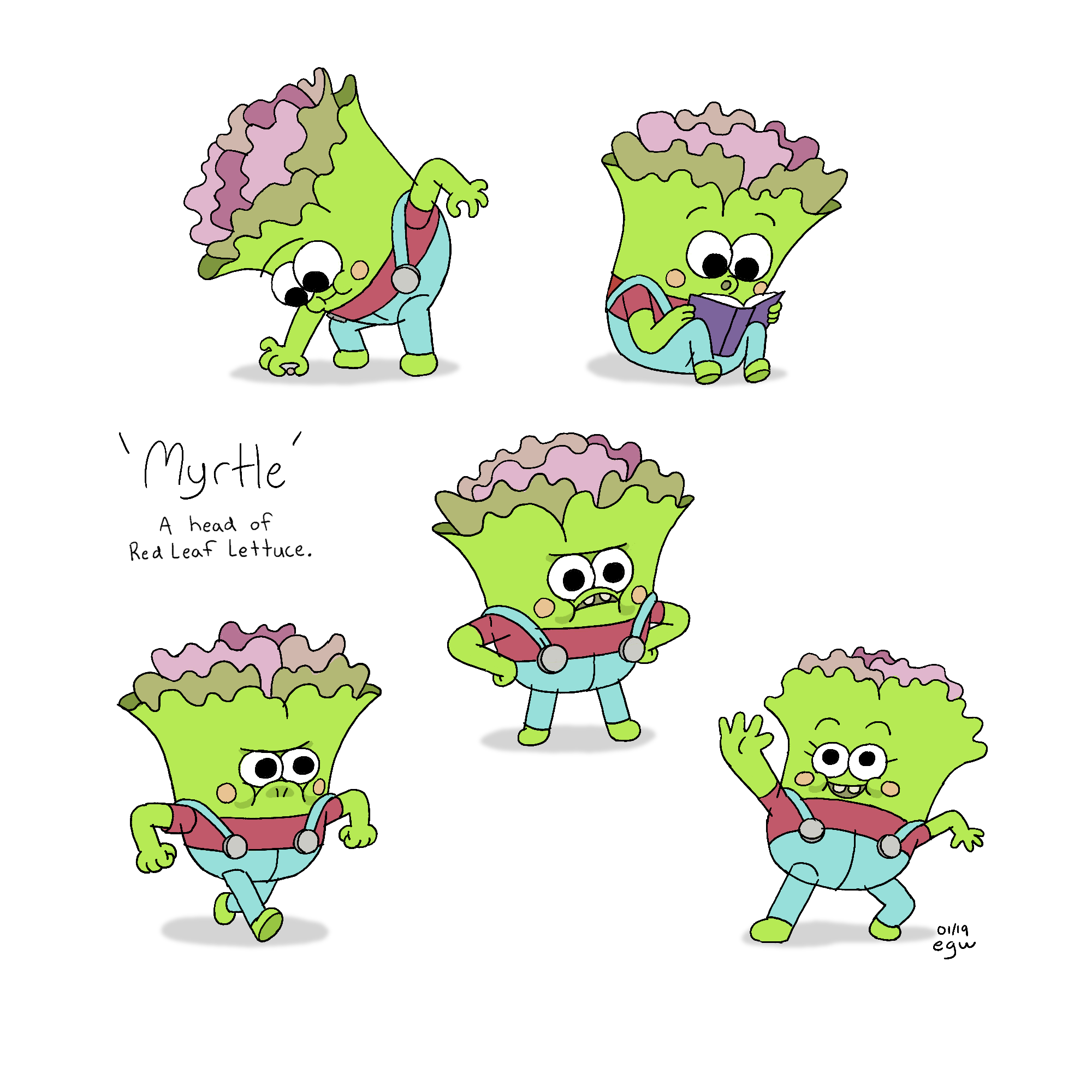 myrtle_poses.png